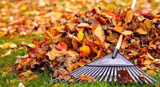Fall Cleaning For Your Job Search: 10 Ways to Prep For Peak Hiring Season
